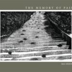 The Memory of Pain